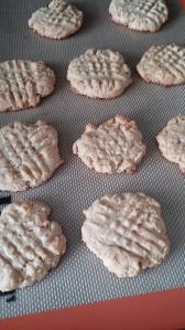 pb krispie cookies