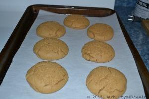 bakers dozen PB cookies BAKED