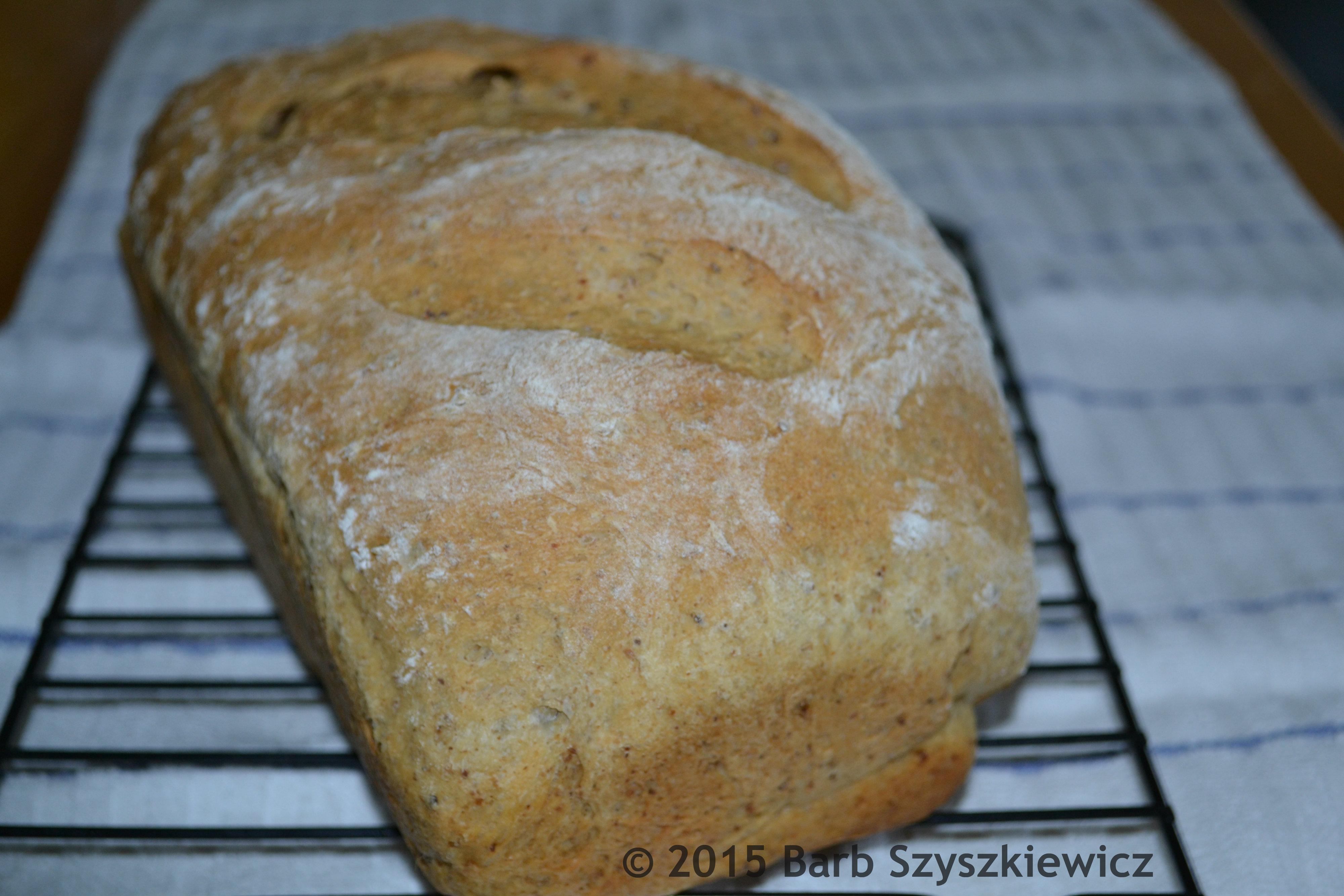 spent grain bread machine
